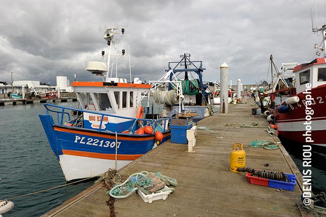 St quay portrieux reportage photos photographe denis - Port de saint quay portrieux ...